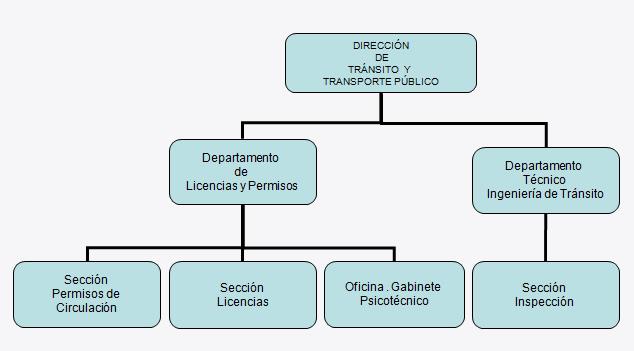 Organigrama direccci n de tr nsito y transporte p blico for Oficina transporte publico